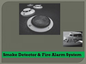 Cost Effective Smoke Detection System