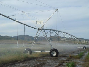 Agriculture Farm Automatic Irrigation System