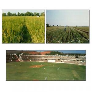Agricultural Perilite