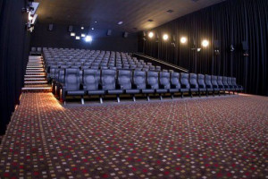 Auditorium Stylish Acoustics Services