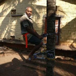 Palm Tree Climber (Sitting + Advance/Basic)
