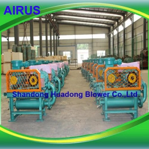 AIRUS Biogas Booster Roots Blower