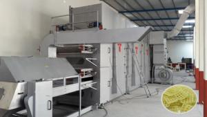 Steam Base Fryums 2D 3D Drying Plant