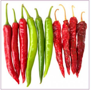 Hy Red And Green Chili Seed (Reshma 084)