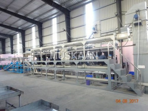 Automatic Cashew Processing Plant - 4 Ton/day
