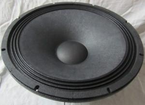 DJ Speaker (HS-4500KP)