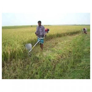Nominal Prices Paddy Cutter