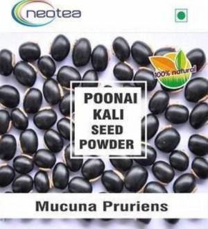Neotea Poonaikali Seed Powder (Kapikachu / Mucuna Prurita)