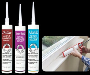 Dollar Acrylic Paintable Sealants