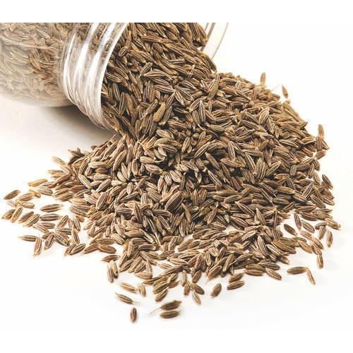 Fresh Pure Cumin Seeds