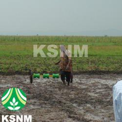 Agriculture Manual Rice Planter