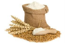 High Quality Pure Wheat Flour